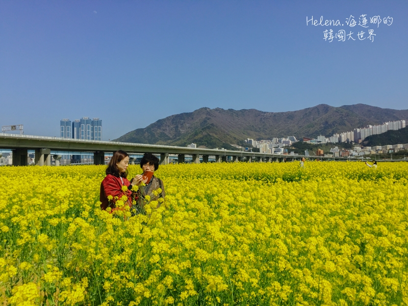 韓國旅行,韓國綜合 @Helena's Blog