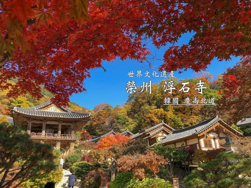 Korea,KOREA農場食宿交換綜合資訊,WWOOF,度假,打工,韓國 @Helena's Blog