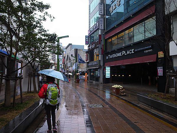in,Korea,WWOOF,度假,打工,洛東江,釜山,韓國 @Helena's Blog