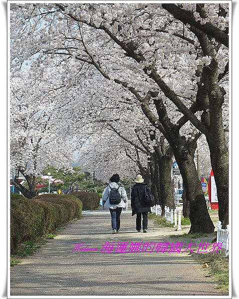 噴泉,多大浦,景點,釜山,韓國 @Helena's Blog