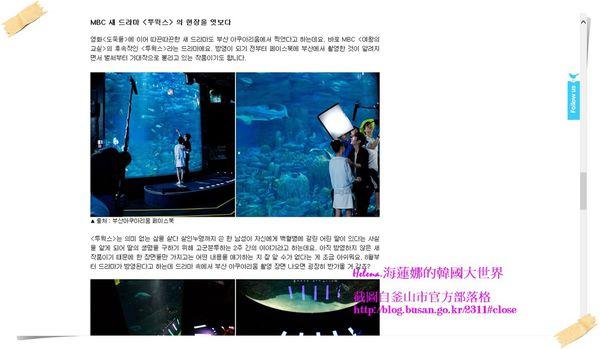 Two,weeks,景點,水族館,釜山,韓劇,韓國,鯊魚 @Helena's Blog