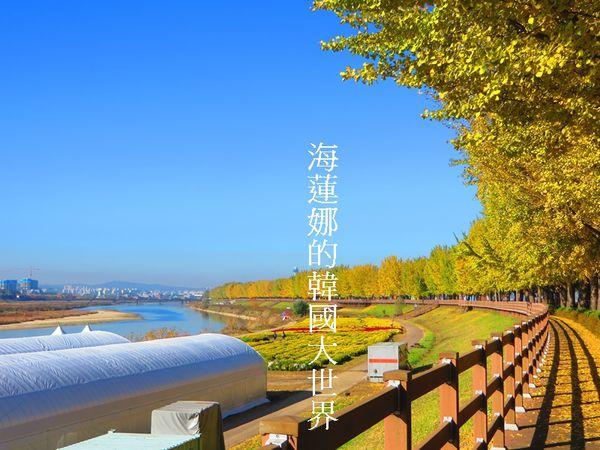 櫻花,江原道,江陵,鏡浦 @Helena's Blog
